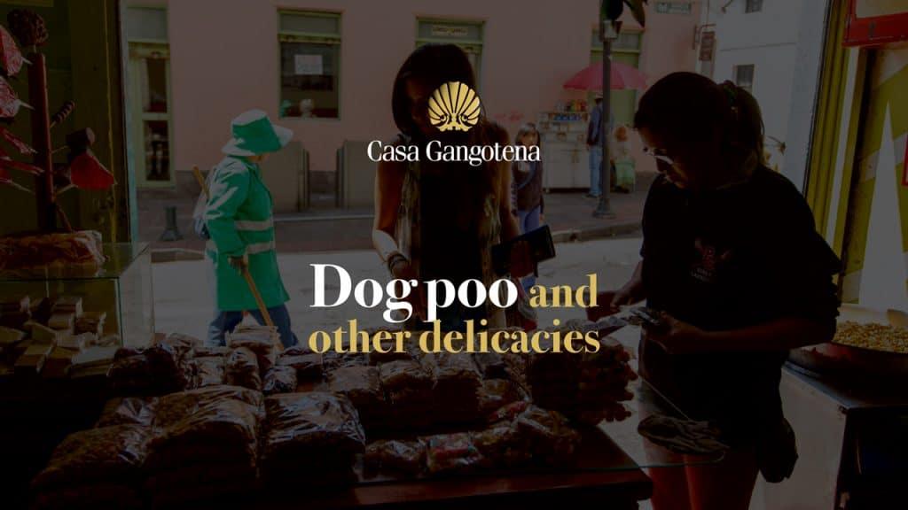 dog-poo-delicacies - slideshow-caca-de-perro-07.jpg